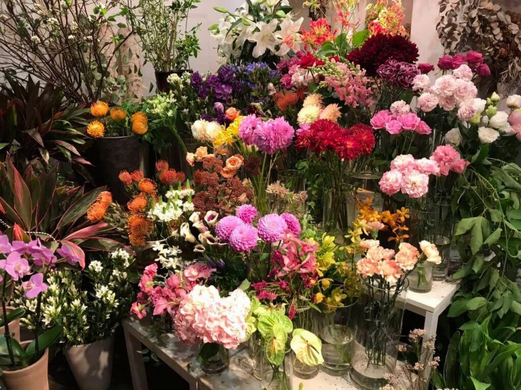 多種多様な花々